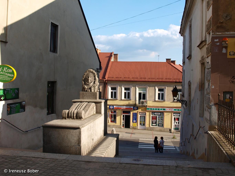 Tarnow Dr202677